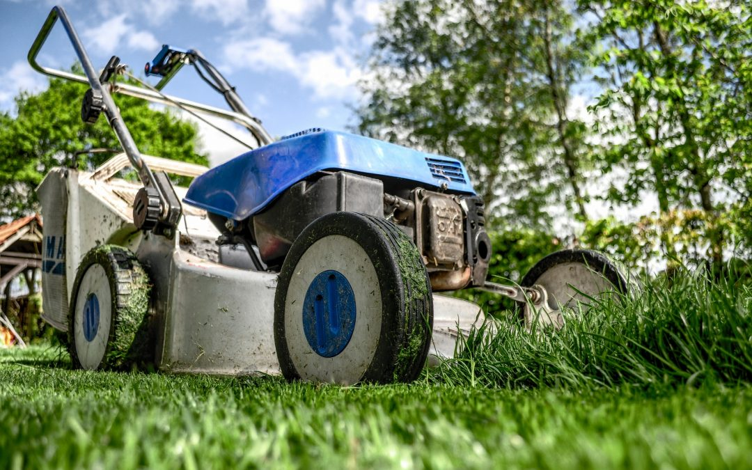 Spring Lawn Care Myths You Probably Believe