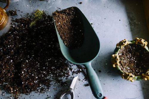 Soil Management: The Basics