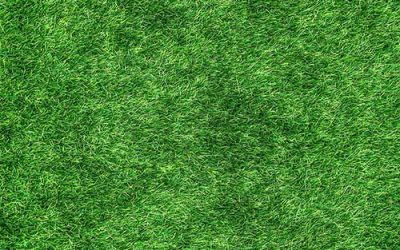 What's Wrong with Your Turf?
